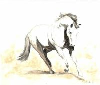 Limited edition print - full body horse