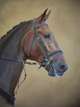 Original oil painting - Horse head