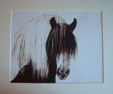 Gypsy Cob Shaggy Mounted
