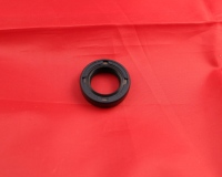 Kickstart Shaft Oil Seal - RTL250