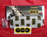 Regina Gold Chain - 428 pitch x 126 links