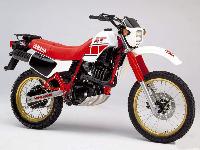 XT600 & TT600 Parts