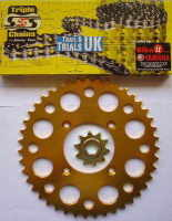 Chain & Sprocket Kit - TLR250F Twinshock - 43 Tooth Rear