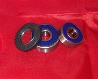 20 24 & 25. Rear Wheel Bearing & Seal Kit - TLR200