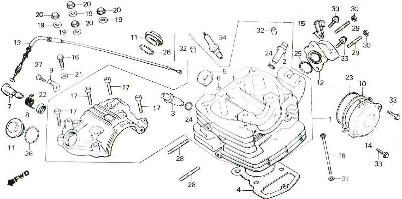 TLR250 Cylinder Head Parts