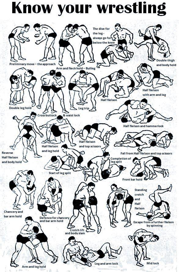 WrestlingMoves