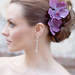 HCTB-050501_MSFP-purple_orchid_hair_flower