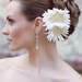 HCTB-050502-MS2-fp_daisy_flower_hair_pin