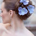 HCTB-050504_MS_fp_blue_bridal_hair_flowers