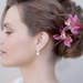 HCTB-052303_msfp_tropical_orchid_hair_flowers_pink