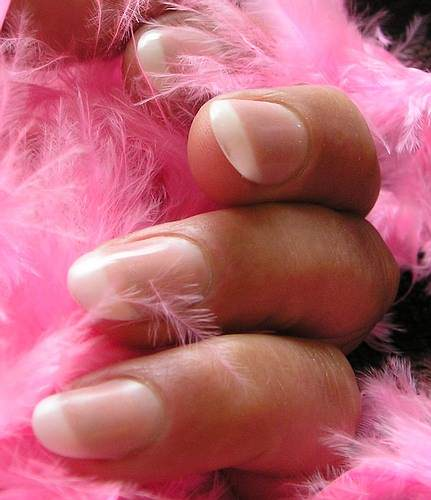 Custom Blend Pink Feathers