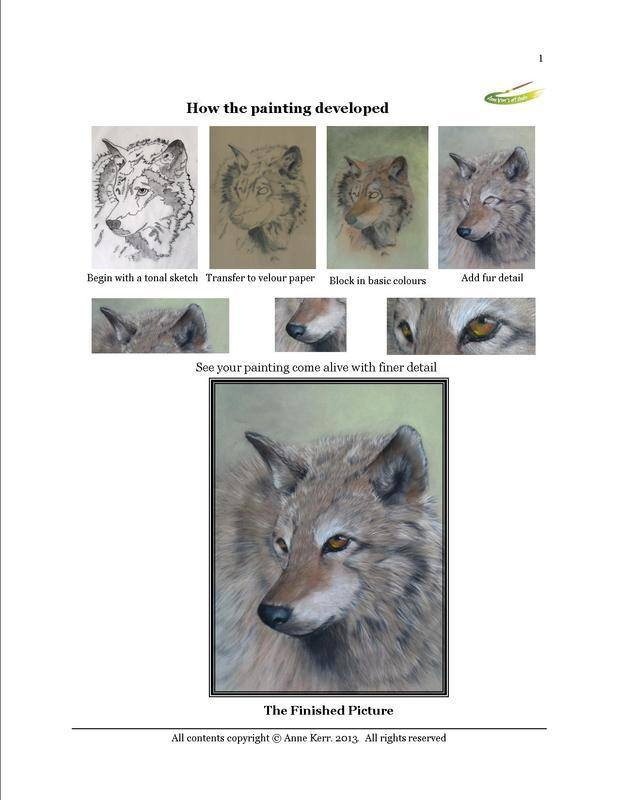 wolf origressional pictures