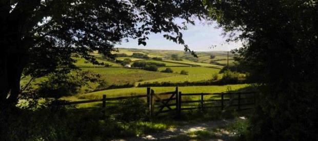 Shorland view