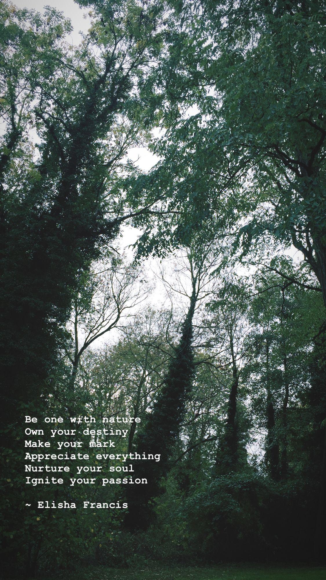 Nature poem by Elisha Francis 2018