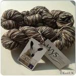 WYS  100% BFL DK - Country Bird Collection (100g) - British Wool