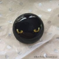 CAT'S EYE BROOCH