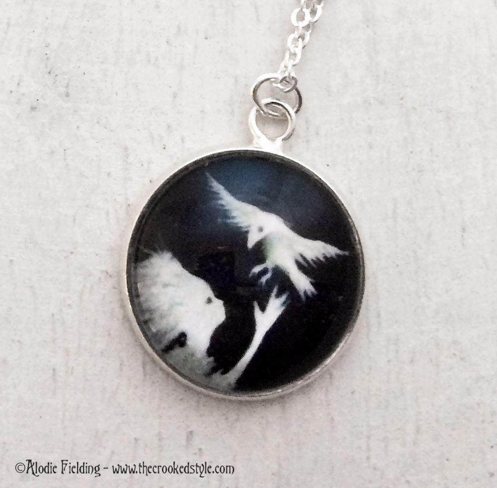 SNOWBIRD WHITE