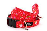 Red strawberries Collar