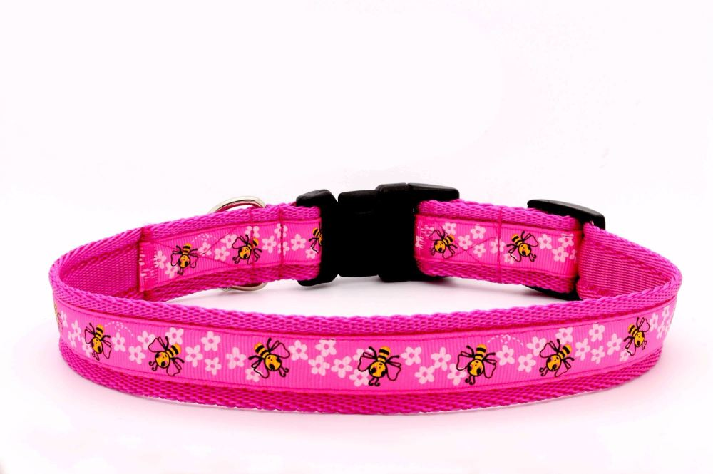 Shocking pink bees Collar