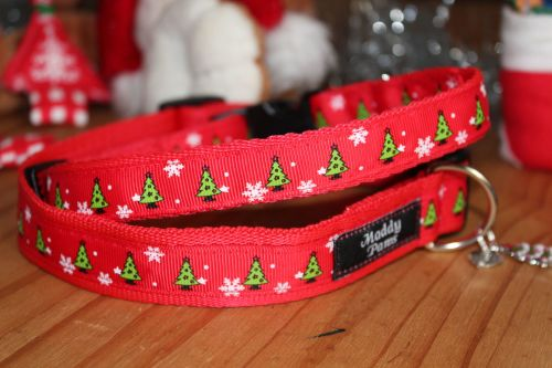 Christmas Trees Collar