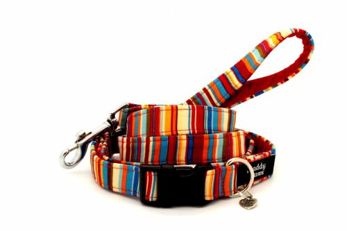 Multi-stripe Collar