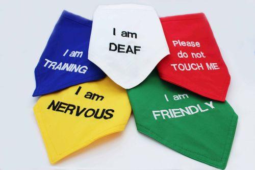 Warning bandana (your own design)