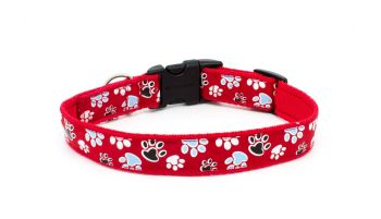 *NEW*  Red 'Paws Galore' Collar