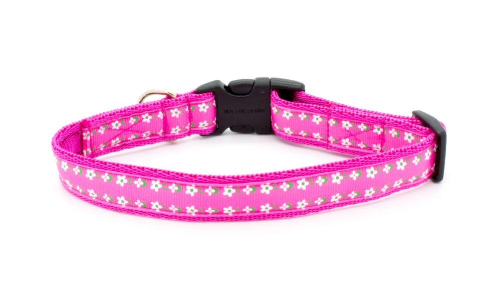 Pink Daisy-May Collar