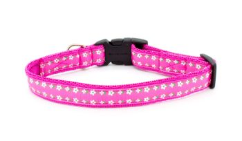 Pink Daisy-May Collar