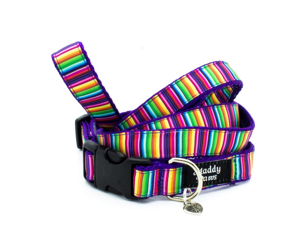 Multi stripe Collar