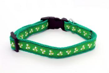 Green Shamrocks Collar