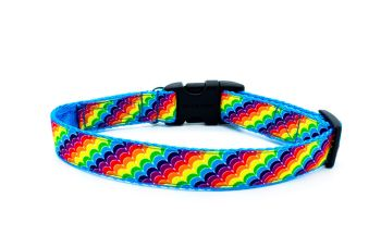 Rainbow Stripe Collar