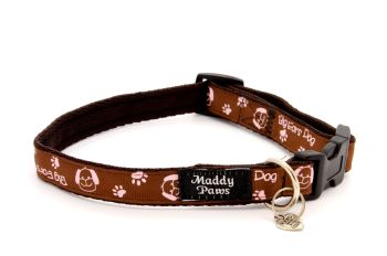 Brown 'Big ears dog' Collar