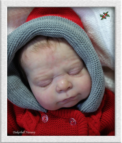 Sleeping - Isaac kit - *COMPLETE REBORN STARTER SET!!* Makes 19