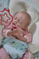 "Sleeping - Cozy kit by Linda Smith - *COMPLETE REBORN STARTER SET!!* Makes 21"" BABY With faux doe suede, disc jointed body."