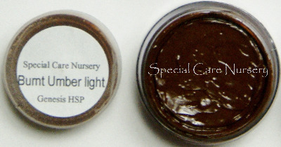 Genesis Heat Set Oil Paints 2g/ml pot - Burnt Umber Light