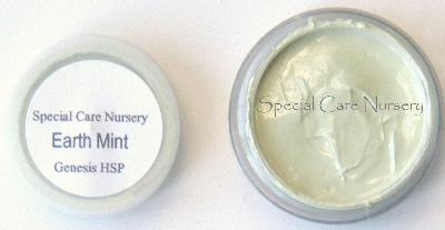 Genesis Heat Set Oil Paints 2g/ml pot Earth Mint
