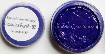 Genesis Heat Set Oil Paints 2g/ml pot - Dioxazine Purple 02