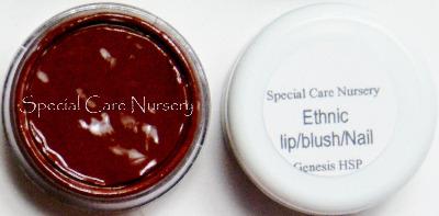 Genesis Heat Set Oil Paints 6g/ml pot 6g/ml Ethnic Lip/Blush/Nail