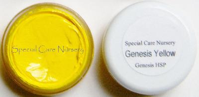 Genesis Heat Set Oil Paints 6g/ml pot 6g/ml Genesis Yellow