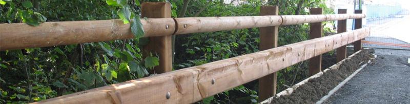 cidneo handrail