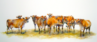 Hot Gossip  Large by Rosemary Blackmore  76cm x 33cm