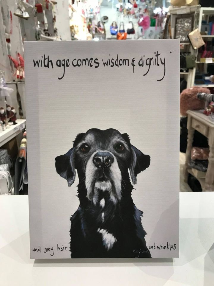 Labrador With Age Comes Dignity - By Kathy Rondel