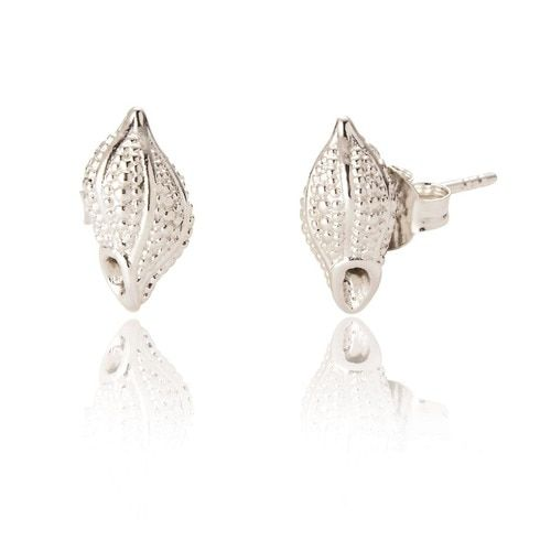 Rhena Shell Stud Earrings