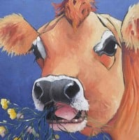 Buttercup by Kathy Rondel