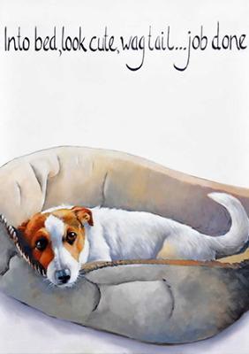 Freddie by Kathy Rondel