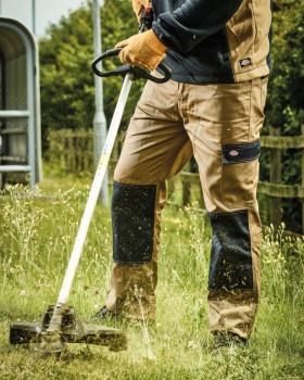 ED247R Dickies Everyday Work Trousers (Reg)
