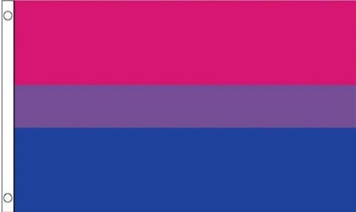 Large Bisexual Pride Flag