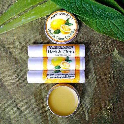 Lip Balm: Herb & Citrus