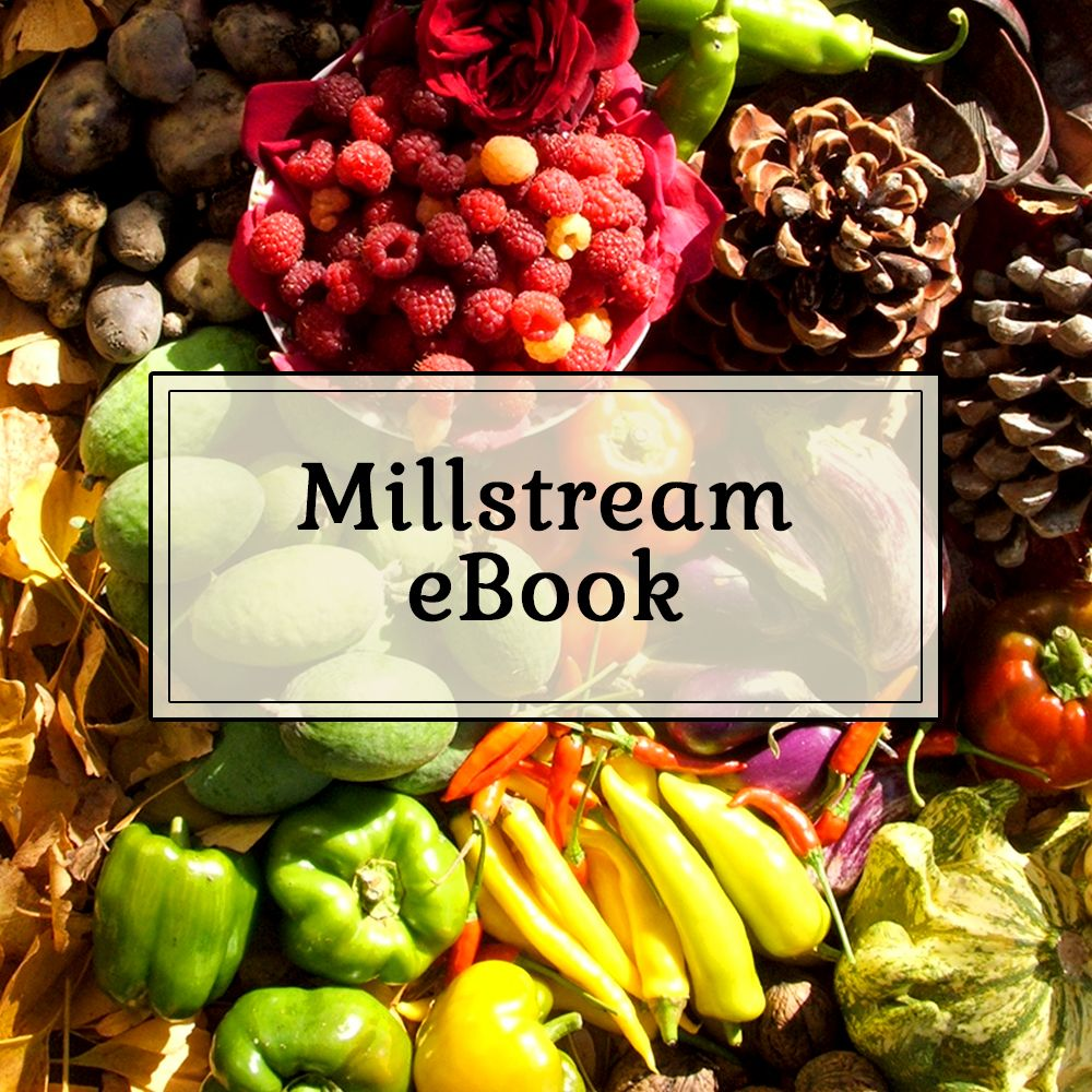 Millstream Not Mainstream eBook